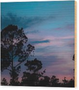 Loblelly Pine Silhouette Wood Print by DigiArt Diaries by Vicky B Fuller