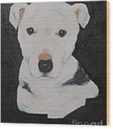 Lobo My Gentle Pitbull Wood Print