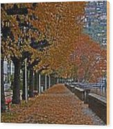 Locarno In Autumn Wood Print