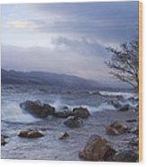 Loch Ness Shoreline At Dusk Wood Print