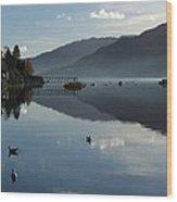 Lochgoilhead Wood Print