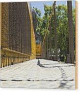 Locomotive Walkway 1 Wood Print