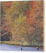 Locust Lake State Park 2968 Wood Print