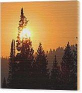 Lodgepole Sundown Wood Print