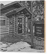 Log Cabin Library 11 Wood Print