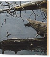 Log Jam Wood Print