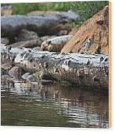 Log On The Lake Wood Print