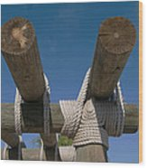 Logs Tied With Rope Wood Print