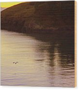 Lone Bird At Rosario Beach Point Wood Print by Randall Thomas Stone