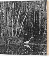 Lone Egret Black And White Wood Print