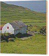 Lone Farmhouse On Mizen Head In West Wood Print