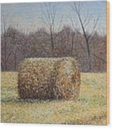 Lone Haybale Wood Print by Patsy Sharpe