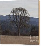 Lone Meadow Wood Print