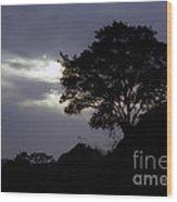 Lone Oak 1 Wood Print