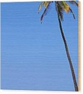 Lone Palm Wood Print