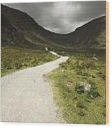 Lone Person Walking On A Path Leading Wood Print