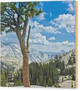 Lone Pine At Half Dome Wood Print