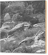 Lone Ram At Red Rock Canyon Wood Print