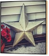 Lone Star Texas Wood Print by Dana Coplin