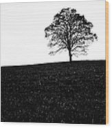 Lone Tree Black And White Silhouette Wood Print