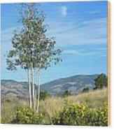 Lone Tree Colorado Wood Print
