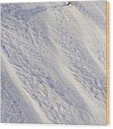 Lone Tree On Mount Hood In Winter Mount Wood Print