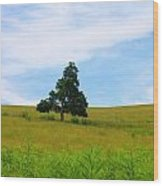 Lone Tree Wood Print