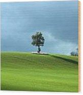 Lone Tree Sintinel Wood Print