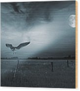 Lonely Bird In Moonlight  Wood Print by Jaroslaw Grudzinski