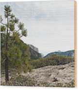 Lonely Pine Wood Print