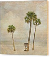 Lonely Shores Wood Print