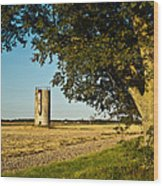 Lonely Silo 4 Wood Print