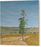 Lonely Tree In Africa Wood Print