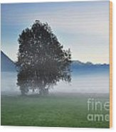 Lonely Tree In The Fog Wood Print