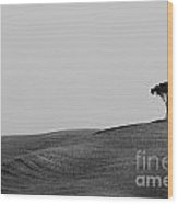Lonely Tree On The Hill Wood Print