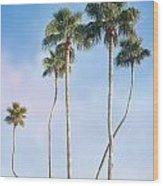 Long Necks Wood Print