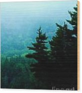 Long Pond Silhouettes Wood Print