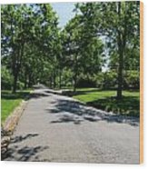 Long Walk Ahead Wood Print
