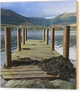 Long Walk Off A Short Pier Wood Print