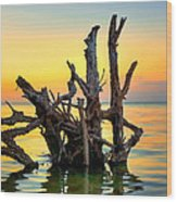 Longboat Key Tree Wood Print