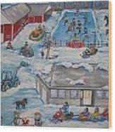 Longshot Farm - Dozois Rink Wood Print