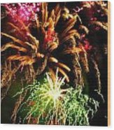 Longwood Fireworks Wood Print