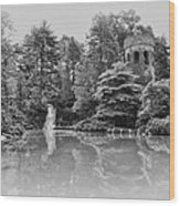 Longwood Gardens Castle In Black And White Wood Print