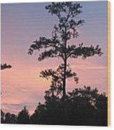 Lonley Tree Wood Print