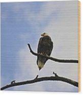 Look Up At The Eagles Wood Print