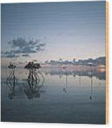 Looking Out To Sea Past Mangrove Shoots Wood Print