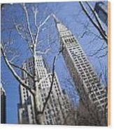 Looking Up Through Trees At Skyscrapers Wood Print by Axiom Photographic