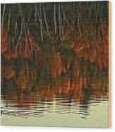 Loon In Opeongo Lake With Reflection Wood Print