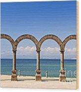 Los Arcos Amphitheater In Puerto Vallarta Wood Print by Elena Elisseeva