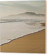 Los Lances Beach Along Costa De La Luz Wood Print